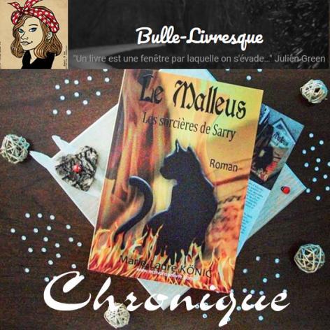 Bulle livresque chronique sur le roman historique le malleus les sorcieres de sarry