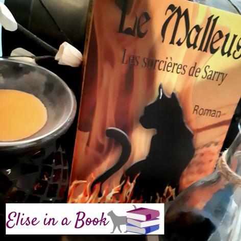 Chronique elise in a book sur le malleus les sorcieres de sarry marie laure konig roman historique