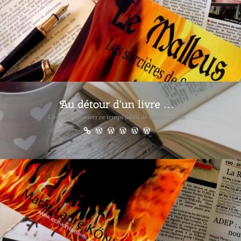 Chronique sur le malleus les sorcieres de sarry au detour d un livre roman historique