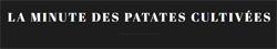 La minute des patates cultivees