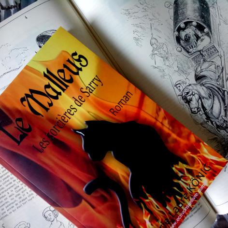 Le blog du malleus les sorcieres de sarry la recherche documentaire marie laure konig roman