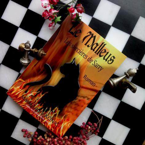 Roman historique moyen age litterature contemporaine bestseller best seller meilleur livre